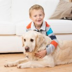 kid safe pet safe pest control
